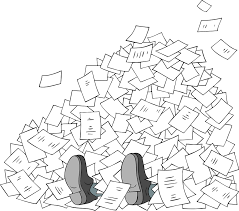 Biurokracy
